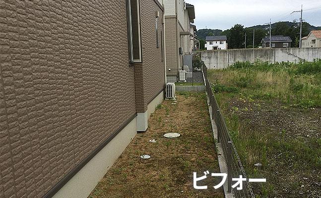 nari_b2 1