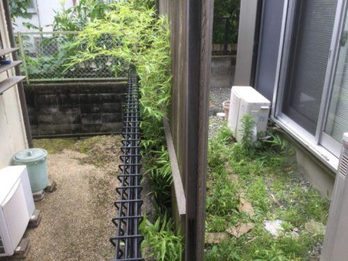 笹対策が大変な庭